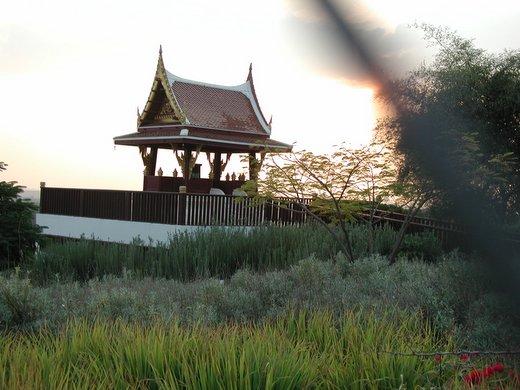 הפגודה של מלך תאילנד. יער בן שמן