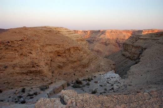 תצפית לערוץ נחל חימר. הקניון הארוך ביותר במדבר יהודה