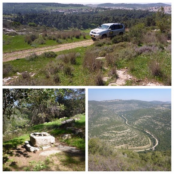 שמורת דולב הרי ירושלים