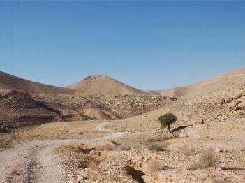 נחל אלות, הר חמרן – ל-4X4