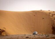 פולקסווגן טיגואן, על רקע דיונה בנחל לבן / צילום: אלון רון