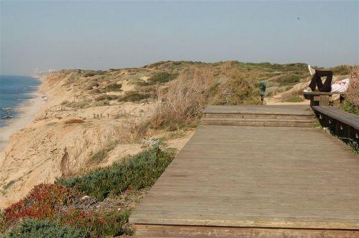 הטיילת בחוף השרון. צילום אורי דביר