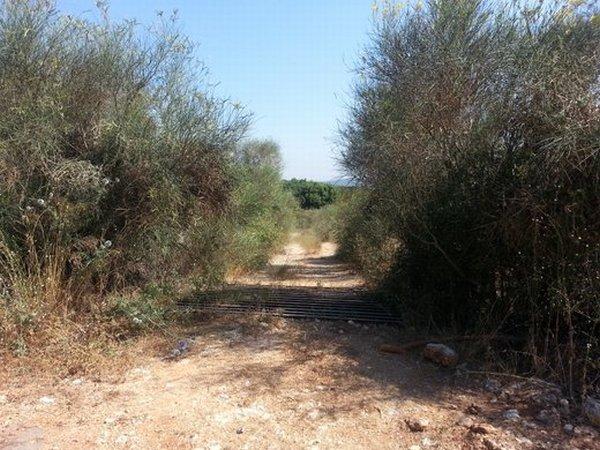 הכניסה לדרך העפר