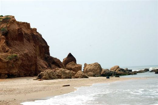 ממכמורת לנתניה לאורך החוף. צילום אורי דביר