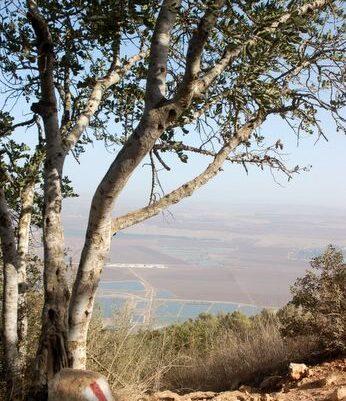 נוף ממרומי הגלבוע לעמק יזרעאל
