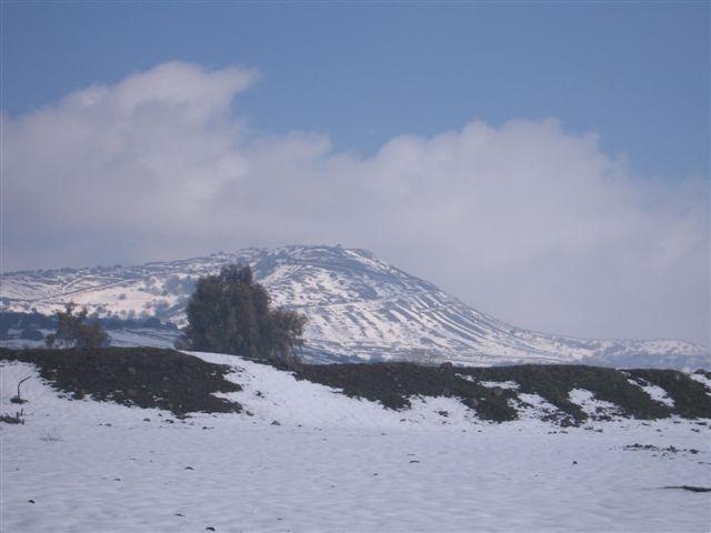 snow_golan_shulner2