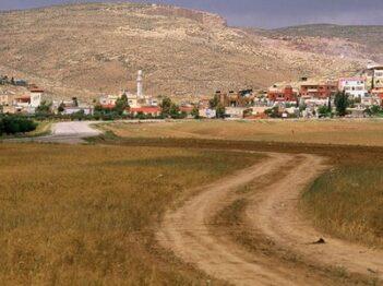 סובב ערד + כפר דריג'את