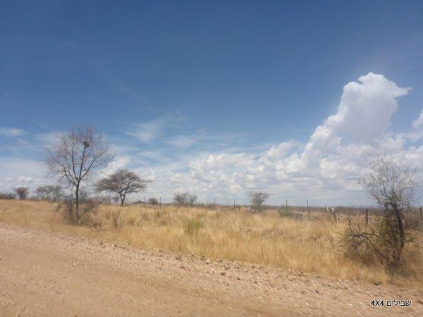 נמיביה טיול
