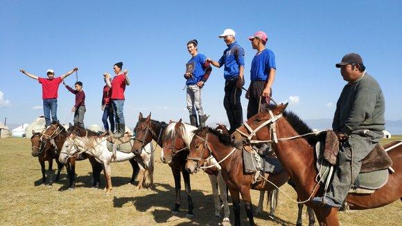 סוסים קירגיסטאן