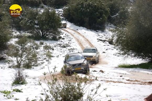 נהיגת שלג