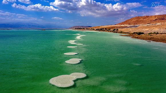 פטריות בים המלח