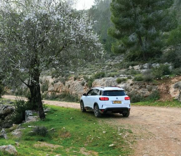 ג'יפונים, רכבי פנאי, טיול, הרי ירושלים