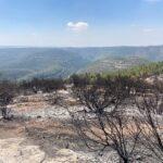 הרי ירושלים אחרי השריפה